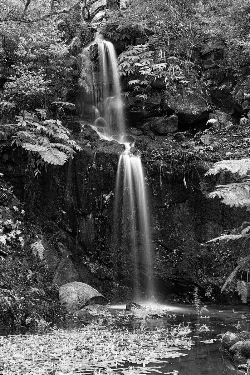 Waterfall in the gardens of Monserrate (Sintra, PT) [800x1200][oc]