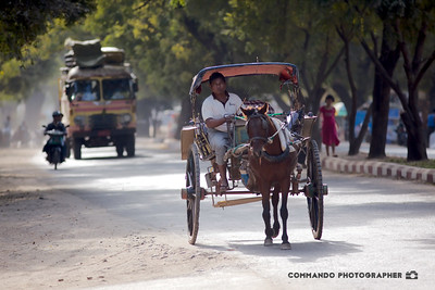 A horse cart rambles down the road.